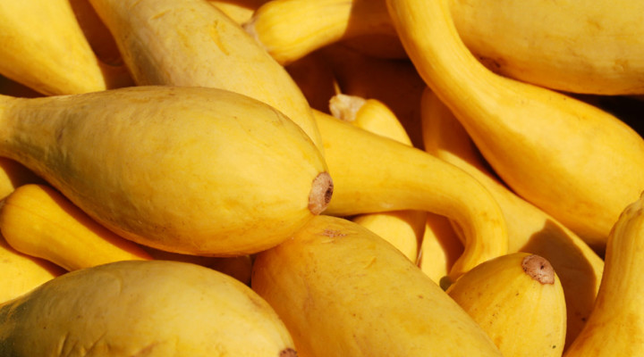 Gluten-Free Banana Squash Bread