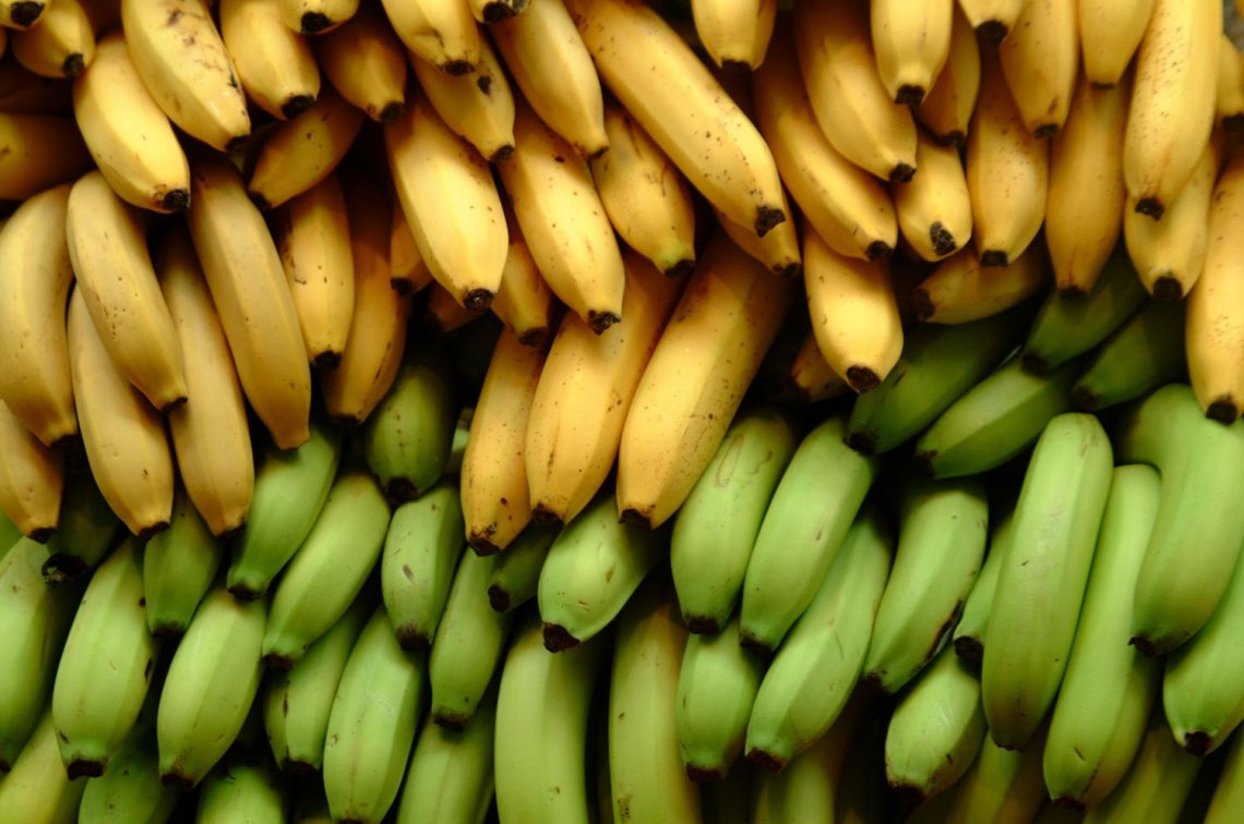 Why Lots of Bananas a Day May Keep the Doctors Away