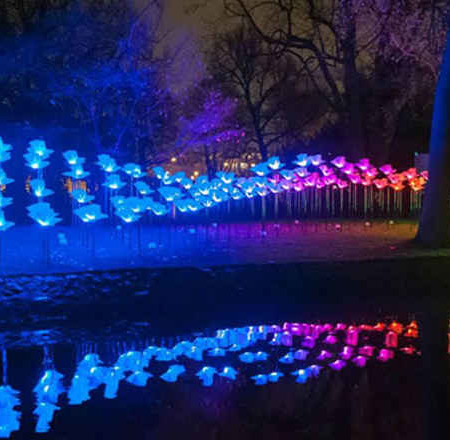 Experience Scotland's newest art and light festival